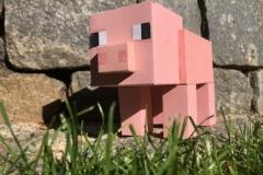 Schwein (Sophie 5d)