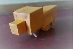 Schwein (5c)
